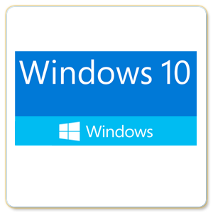 Microsoft Windows 10 Play Bilgisayar