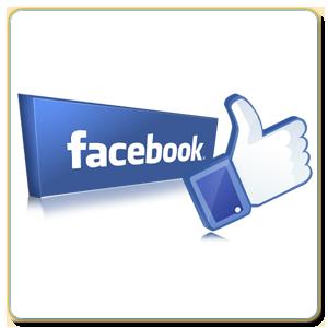 Facebook Beğenmedim Butonu Play Bilgisayar
