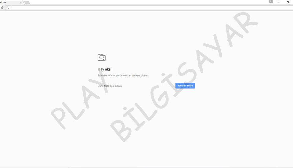 Google Chrome Hay Aksi Sorunu Çözümü